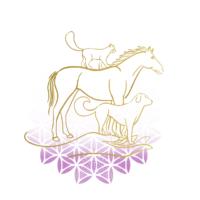 logo reiki animaux
